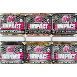 MAINLINE POP-UP HIGH IMPACT AROMATIC FISH 16MM