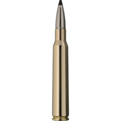 RWS 7X64/SPEED TIP PROFESSIONAL/9,7G